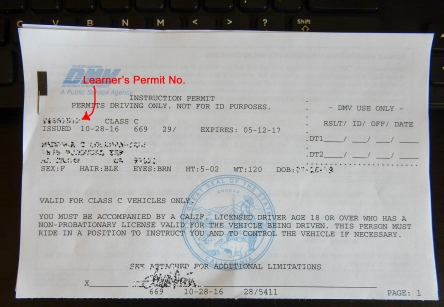 California DMV Learner's Permit